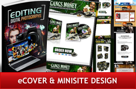eCover & Minisite Design